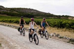 Ciclistasvinedos