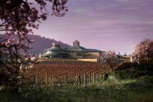 Vivanco-Imagen entre viñas