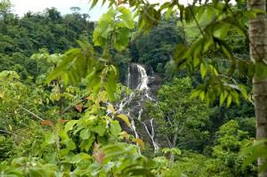Cascada-y-selva-en-Quepos-Puriscal