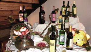 especial-viajes-turismo-gomera-vinos-2