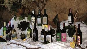 especial-viajes-turismo-gomera-vinos