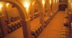 cumbre-internacional-vino-tomelloso-2015